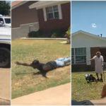 """États-Unis """"J'ai peur"""", crie un homme noir alors que de nombreux policiers tirent des armes sur lui et sa grand-mère de 90 ans (vidéo)"""